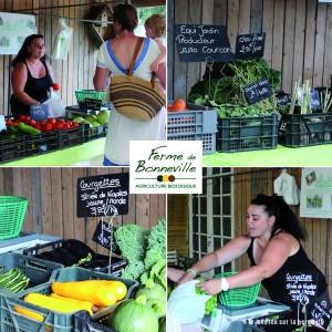 marche150703-legumes