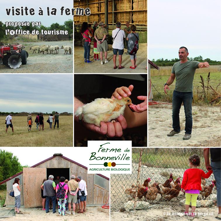 Visite de ferme - Office tourisme bonneville ...